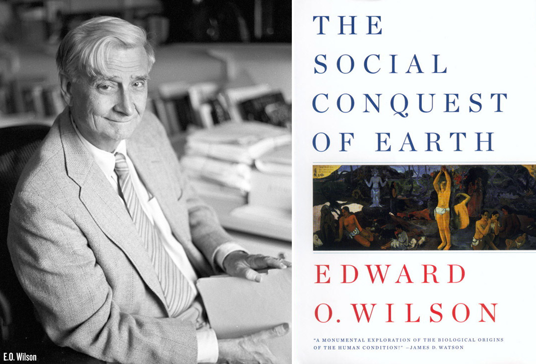 Image result for edward o wilson social conquest