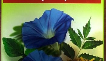SAFI THE BLOOD PURIFIER 200ml - Online Vitamins & Natural Medication