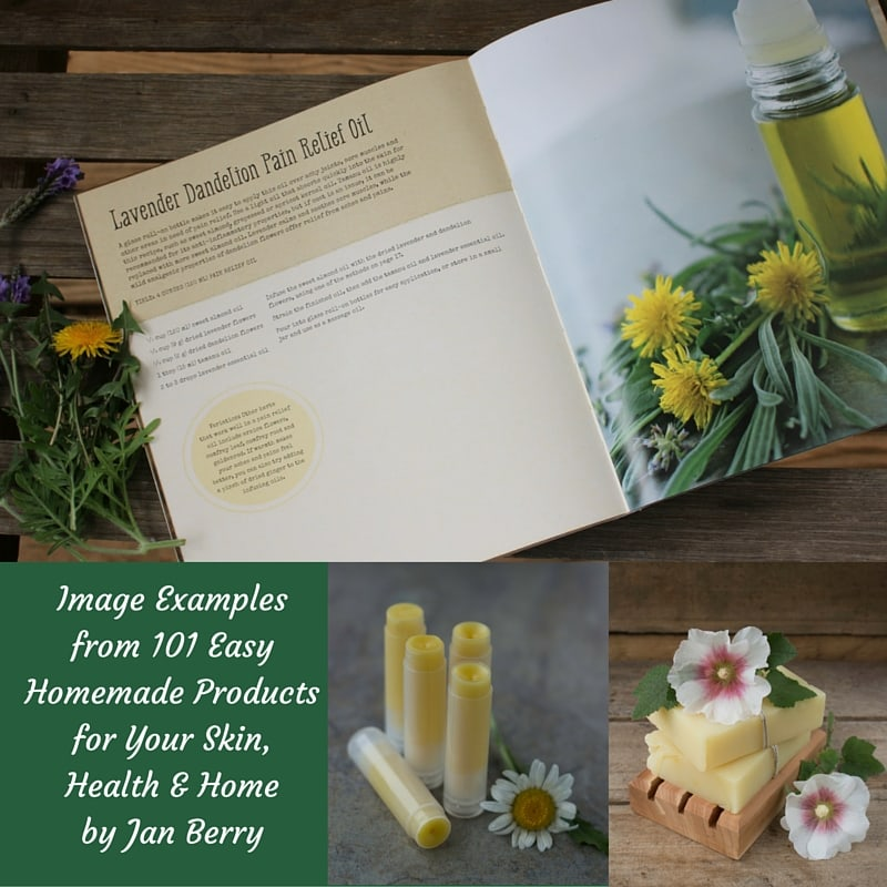 Examples from 101 Easy Homemade Products