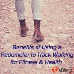 Benefits Of Using A Ozo Fitness Pedometer