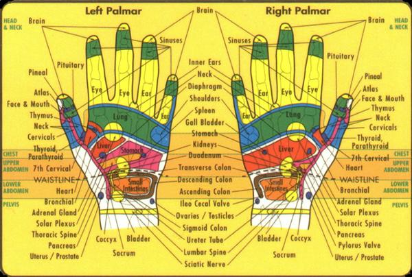 Hands whole body