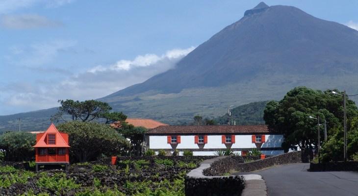 Museu do Vinho - Ilha do Pico