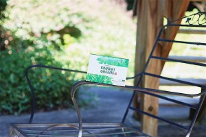 My Simple Self-Care Rituals with Kiwami Greens