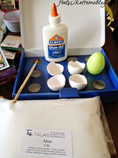 Cool Science Experiments for Kids