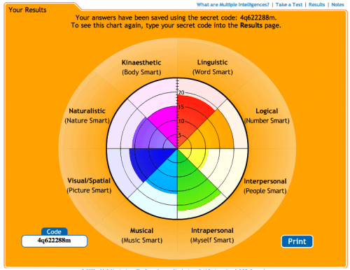 Multiple intelligence test for adults