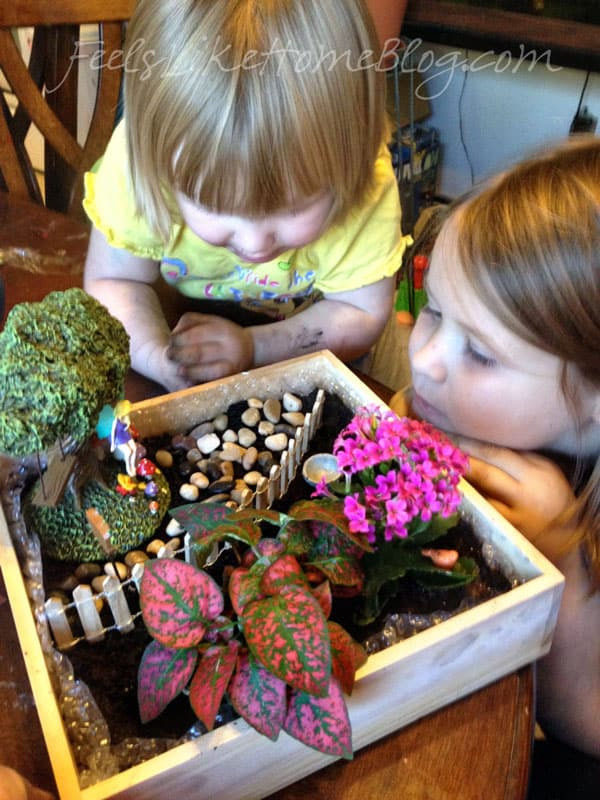 How to Make a Fairy Garden for Under $20