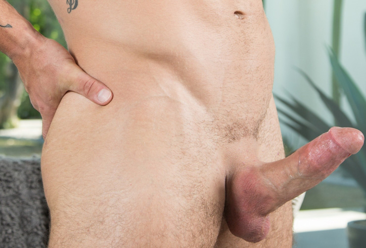 NextDoorRaw Sunny Bums Logan Cross Steve Rogers Gay Bareback Sex Twink & Muscular Hunk Fucking Tattoos Fat Cock Bonus