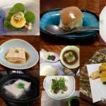 Shoraian Tofu Restaurant, Kyoto – unforgettable!
