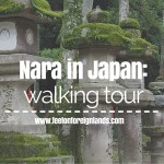 See Nara with a walking tour