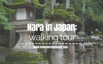Nara walking tour: www.feetonforeignlands.com