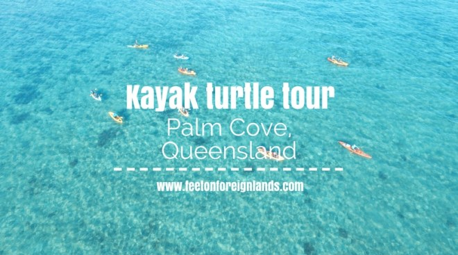 Kayak turtle tour Palm Cove