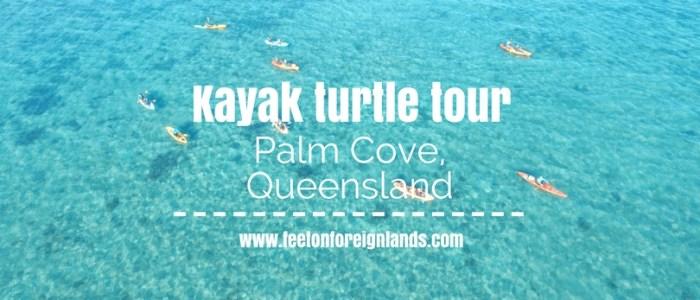 Kayak turtle tour Palm Cove