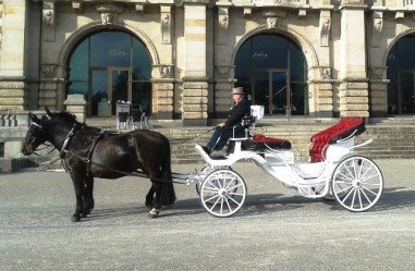Heiraten In Brandenburg Dream Weddings International