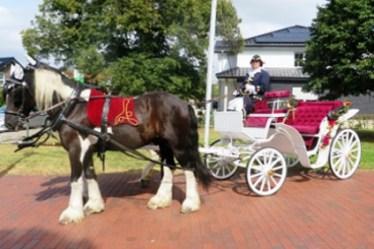 Peter Maffay Rollt In Eichsfelder Kutsche Zu Seiner Hochzeit Auf