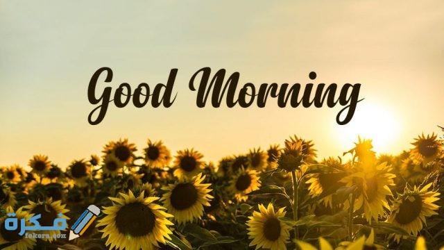ما هو الرد على Good Morning موقع فكرة