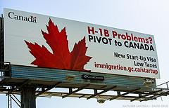 h1b in canada