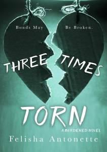 Book Cover: Three Times Torn