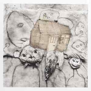 19 tiny house
