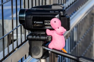 Felix Gottwald's mascot, a pink hippo, on the control of a video camera
