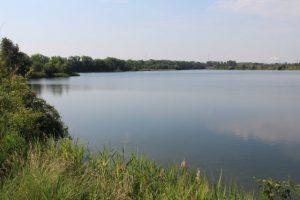 Hier am Nordufer ist der Hufeisensee noch ursprünglich. Im Winter 2014 wurde hier allerdings Vinylchlorid gemessen. Foto: XKN