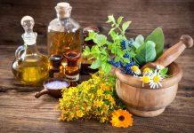 Plantas amigas da terceira idade – Um Calmante e um Estimulante