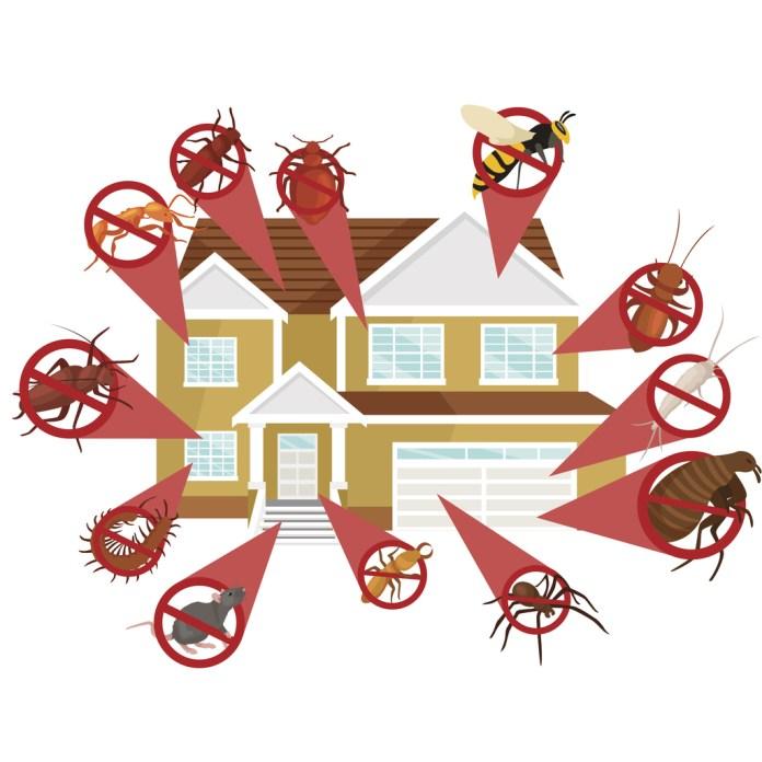 Maneiras de espantar os insetos de dentro de casa