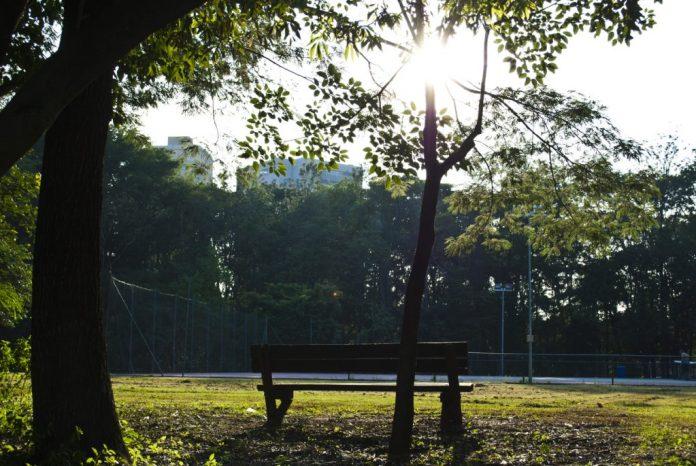 Nos parques da cidade