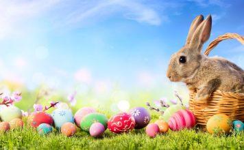 A Páscoa e os Ovos de Chocolate - Entenda