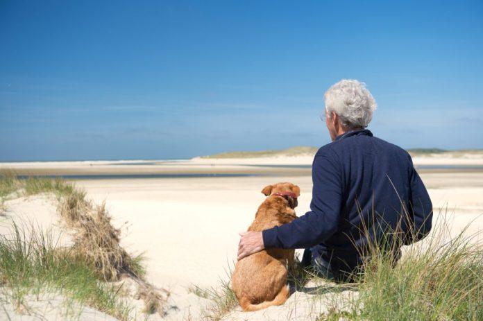 Risco de morte em idosos reduz 17% com atividade física de baixa intensidade