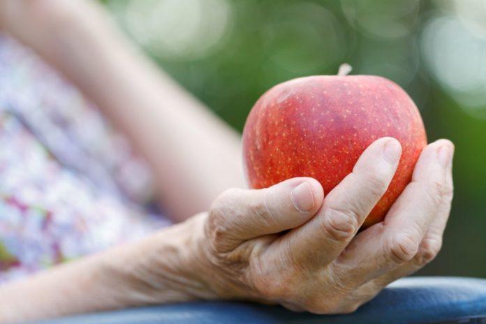 12 dicas para uma boa alimentação na terceira idade