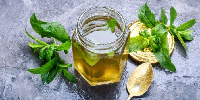 Chá de Menta – Conheça seus benefícios