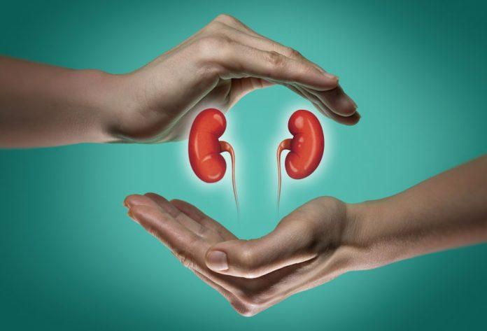 6 passos para combater as pedras nos rins