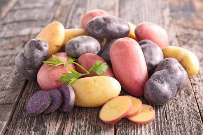 6 principais tipos de Batata e seus benefícios