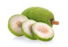 Fruta-pão para o controle da Pressão e do Diabetes