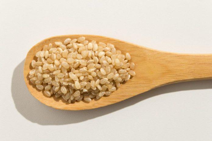 4 tipos de arroz mais conhecidos no Brasil