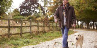 8 benefícios importantes da caminhada para saúde
