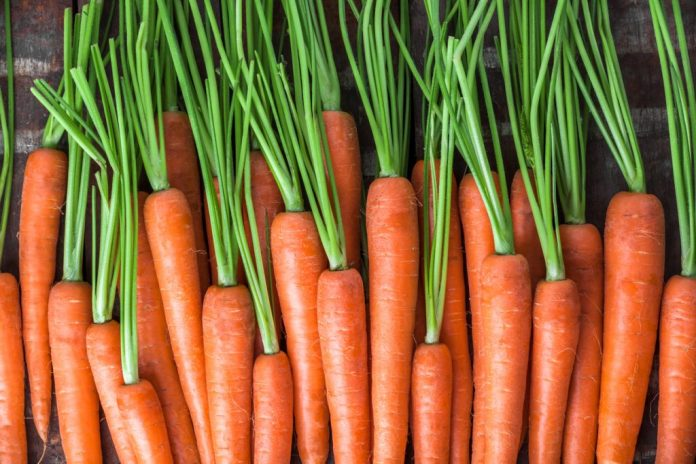 Talos de Cenoura, Brócolis e Espinafre – Como aproveitar