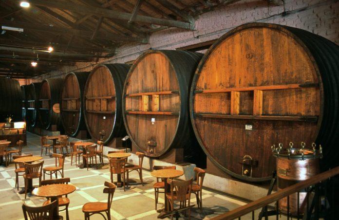 Mendoza – Argentina – Mais do que vinhos