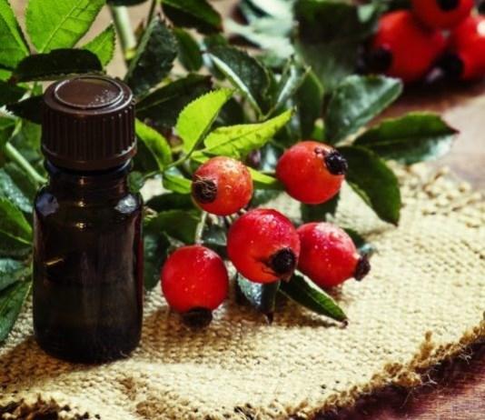 Rosa Mosqueta – Forte atuante antienvelhecimento