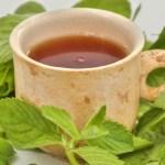 Dieta: la fitoterapia, principi e vantaggi