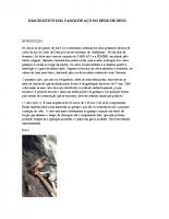 Diagnóstico dos cabos de aço do Dedo de Deus – 1-2-2016