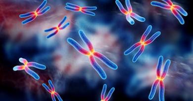 anomalia cromosomica