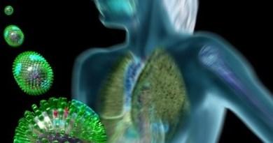 eptobacilosis mordedura rata