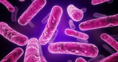 enfermedad micobacteriana