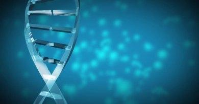 Retraso en el crecimiento por resistencia al factor de crecimiento insulínico tipo 1