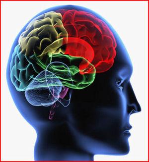 Trastorno cerebeloparenquimatoso autosómico recesivo 3
