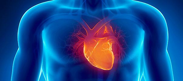 Síndrome de la enfermedad cardíaca polivalvular