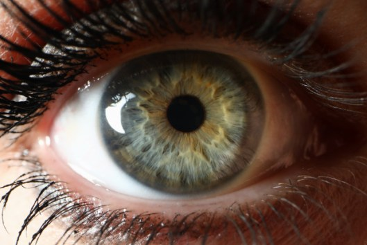 Glaucoma congénito