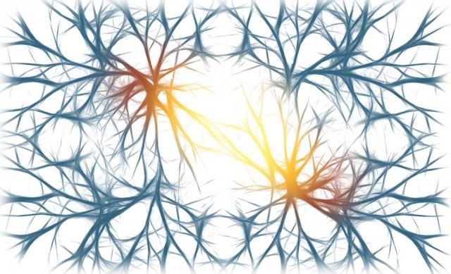 Deficiencia intelectual ligada al X - epilepsia - psoriasis