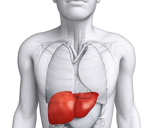 Carcinoma hepatocelular pediátrico
